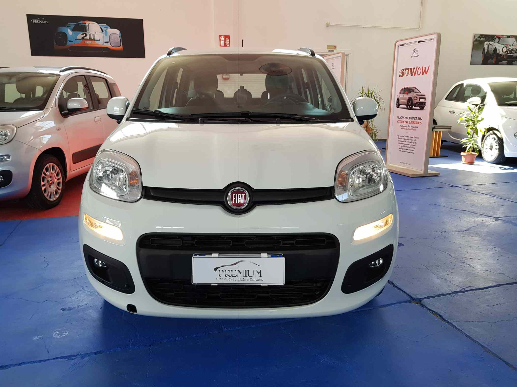 fiat_panda_premium_auto_enna_vendita_auto_9