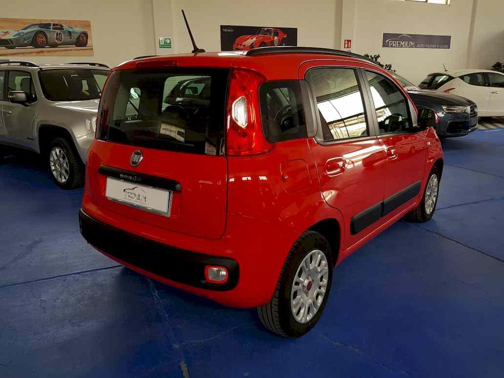 fiat_panda_auto_vendita_veicoli_nuovi_usati_enna_16